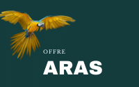 Offre Aras (700€/mois)